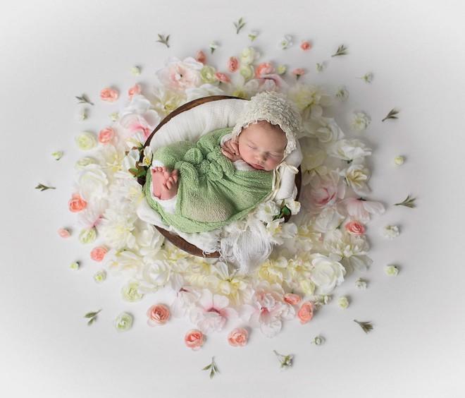 Ngất ngây với chùm ảnh những em bé sơ sinh cuộn tròn say ngủ - Ảnh 9.