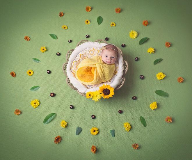Ngất ngây với chùm ảnh những em bé sơ sinh cuộn tròn say ngủ - Ảnh 18.