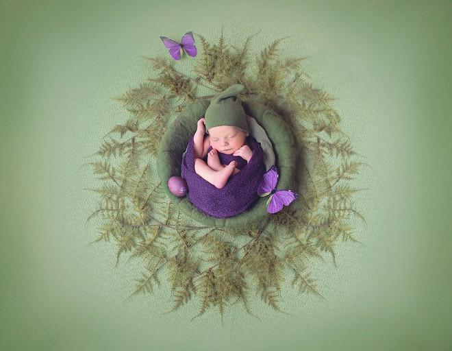 Ngất ngây với chùm ảnh những em bé sơ sinh cuộn tròn say ngủ - Ảnh 19.