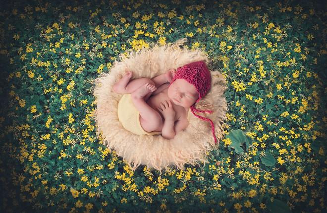 Ngất ngây với chùm ảnh những em bé sơ sinh cuộn tròn say ngủ - Ảnh 26.