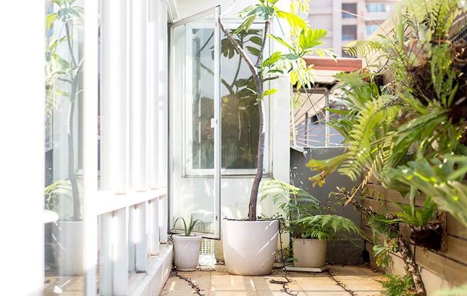 Căn hộ trên tầng áp mái với khu vườn xanh mát màu thiên nhiên của giám đốc văn phòng - Ảnh 14.
