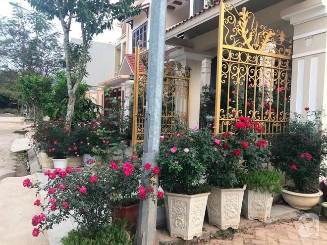 Khoảng sân nhỏ nhưng có những chậu hồng sai hoa, đẹp ngất ngây của mẹ hai con ở Hòa Bình - Ảnh 4.
