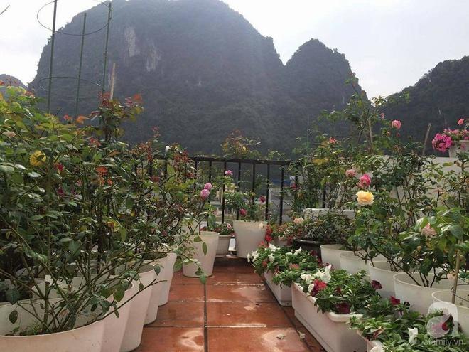 Ngôi nhà hoa hồng nhỏ nhắn và vô cùng dễ thương giữa thành phố Hạ Long của mẹ trẻ xinh đẹp - Ảnh 9.