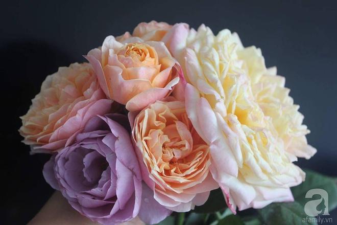 Ngôi nhà hoa hồng nhỏ nhắn và vô cùng dễ thương giữa thành phố Hạ Long của mẹ trẻ xinh đẹp - Ảnh 15.