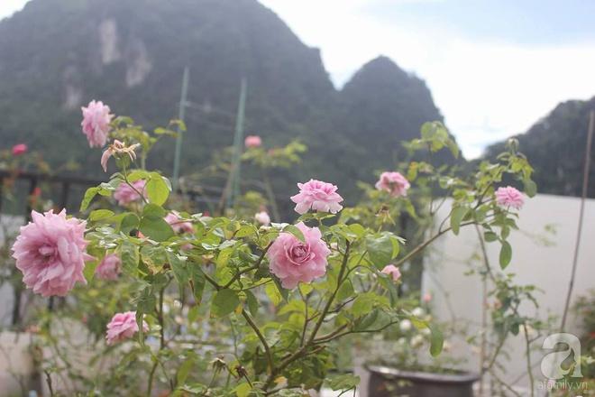 Ngôi nhà hoa hồng nhỏ nhắn và vô cùng dễ thương giữa thành phố Hạ Long của mẹ trẻ xinh đẹp - Ảnh 22.