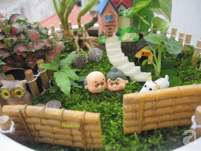 Vườn sen đá đẹp ngất ngây của chàng trai Hà Nội dành cả tuổi thanh xuân cho niềm đam mê của mình - Ảnh 20.