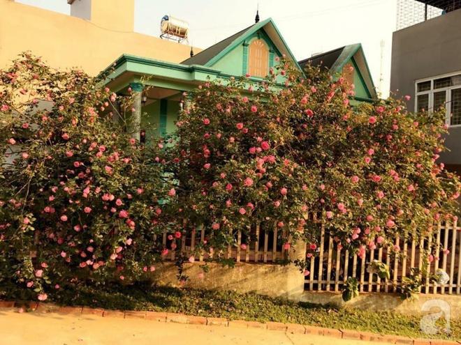 Ngôi nhà yên bình rợp bóng hồng cổ Sapa trên phố núi Tây Bắc của mẹ hai con xinh đẹp - Ảnh 2.