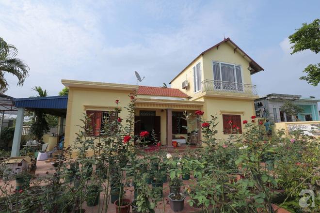 Ngôi nhà yên bình bên vườn hoa hồng với 3000 gốc hoa hồng ngoại của cô giáo ở Nam Định - Ảnh 1.