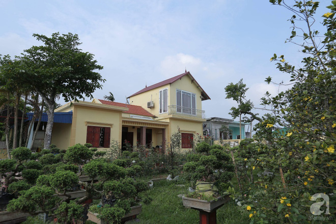 Ngôi nhà yên bình bên vườn hoa hồng với 3000 gốc hoa hồng ngoại của cô giáo ở Nam Định - Ảnh 2.
