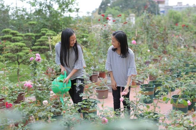 Ngôi nhà yên bình bên vườn hoa hồng với 3000 gốc hoa hồng ngoại của cô giáo ở Nam Định - Ảnh 3.