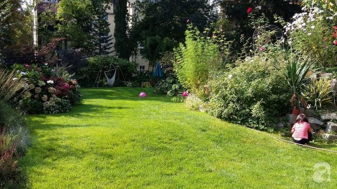 """Khu vườn đẹp như mơ của người chồng dành cả """"thanh xuân"""" đi tìm các loại hoa hiếm về tặng vợ - Ảnh 7."""