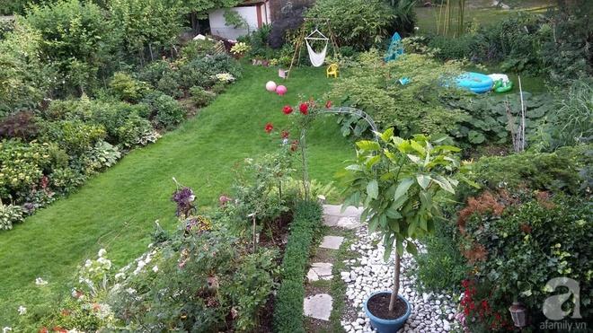 """Khu vườn đẹp như mơ của người chồng dành cả """"thanh xuân"""" đi tìm các loại hoa hiếm về tặng vợ - Ảnh 9."""