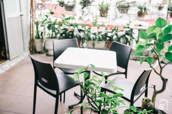 Ngôi nhà ở phố cổ Hà Nội đẹp như một bức tranh hoài niệm về quá khứ, tạo nên cảm giác yên bình và vô cùng lãng mạn - Ảnh 24.