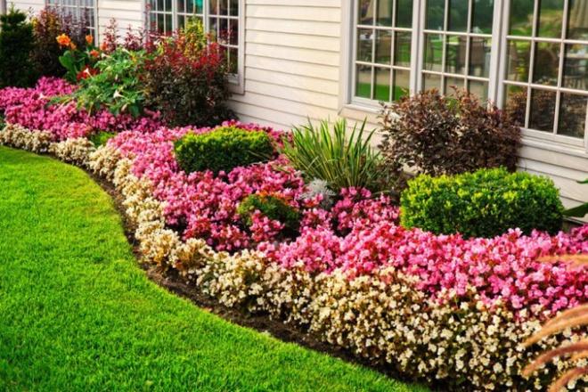 12 ý tưởng thiết kế khu vườn đẹp với biến tấu của hoa khiến bạn không thể rời mắt - Ảnh 2.