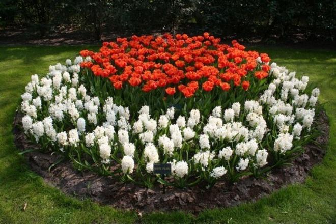 12 ý tưởng thiết kế khu vườn đẹp với biến tấu của hoa khiến bạn không thể rời mắt - Ảnh 4.