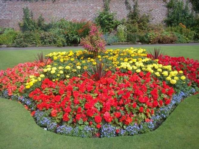 12 ý tưởng thiết kế khu vườn đẹp với biến tấu của hoa khiến bạn không thể rời mắt - Ảnh 11.