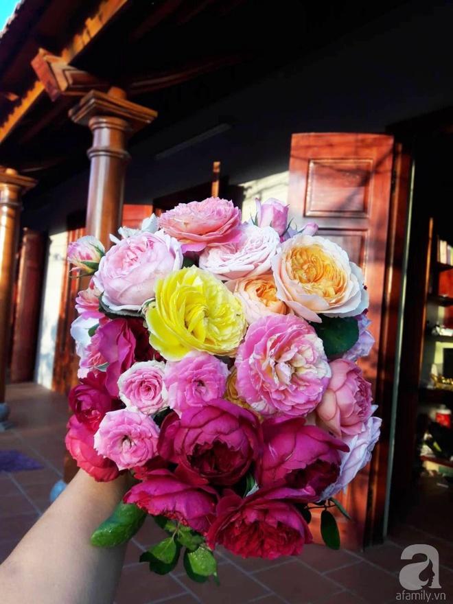 Khu vườn hoa hồng rộng hơn 1000m², rực rỡ sắc màu từ hoa nội đến hoa ngoại của cô giáo mầm non ở Hà Nội - Ảnh 16.