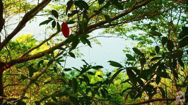 Đạo diễn trẻ bỏ Sài Gòn ra đảo sống trong căn nhà gỗ có view biển đẹp ngỡ ngàng   - Ảnh 1.