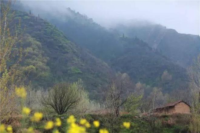 Yêu thích cuộc sống tĩnh lặng trên núi, cô gái 23 tuổi tự tay dựng ngôi nhà nhỏ, trồng rau, sống an nhàn những ngày thanh xuân - Ảnh 9.