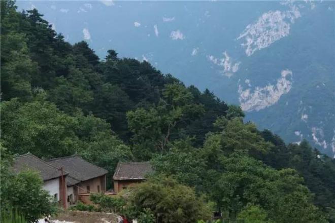 Yêu thích cuộc sống tĩnh lặng trên núi, cô gái 23 tuổi tự tay dựng ngôi nhà nhỏ, trồng rau, sống an nhàn những ngày thanh xuân - Ảnh 16.