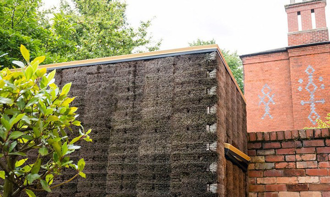 Độc đáo căn nhà được làm từ hơn 500 cây chổi dừa - Ảnh 2.