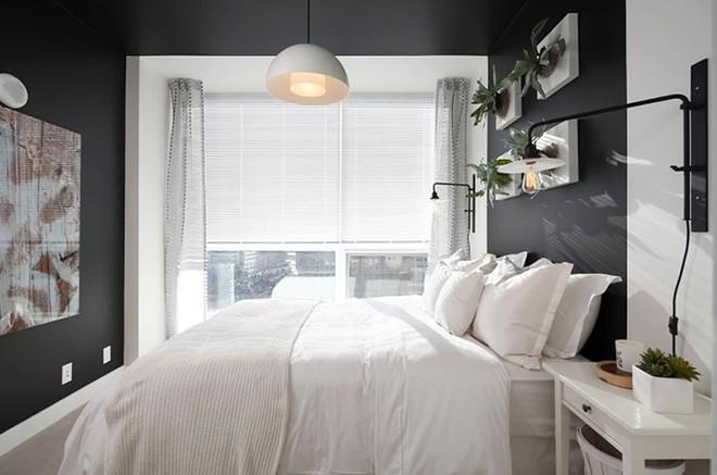 Những mẫu phòng ngủ hiện đại, thư giãn với cây cảnh - Ảnh 2.