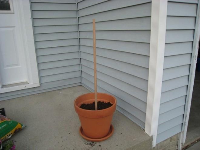 Cách đơn giản và dễ làm để tạo tháp chậu cây cho khu vườn hay hiên nhà bạn thêm sinh động - Ảnh 4.