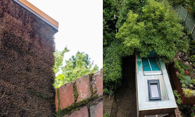 Độc đáo căn nhà được làm từ hơn 500 cây chổi dừa - Ảnh 8.