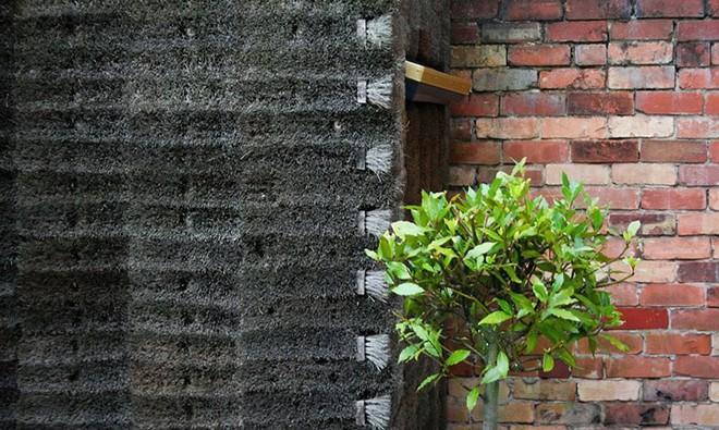 Độc đáo căn nhà được làm từ hơn 500 cây chổi dừa - Ảnh 10.
