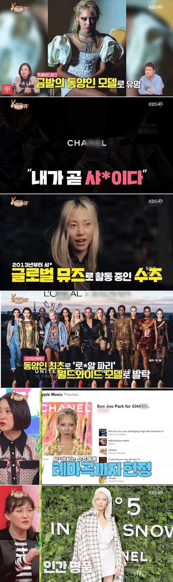 Ngồi yên cũng dính chưởng: Jennie bất ngờ bị netizen mỉa mai rằng không xứng với danh Chanel sống chỉ vì 1 người mẫu xứ Hàn - Ảnh 1.