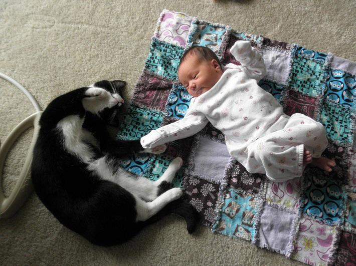 15 bức ảnh chụp trẻ em cùng thú cưng khiến những người lạnh lùng nhất cũng phải