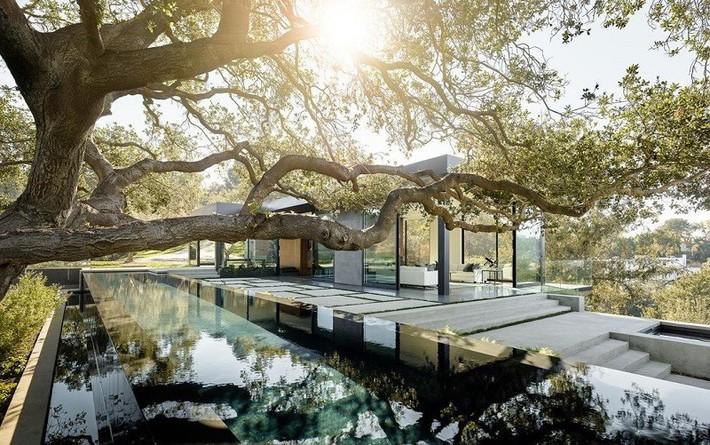 Nằm ở hẻm núi dưới tán cây sồi trăm tuổi, ngôi nhà gây ngạc nhiên nhờ kết cấu bất đối xứng đặc biệt - Ảnh 2.