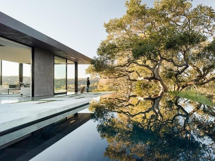 Nằm ở hẻm núi dưới tán cây sồi trăm tuổi, ngôi nhà gây ngạc nhiên nhờ kết cấu bất đối xứng đặc biệt - Ảnh 3.
