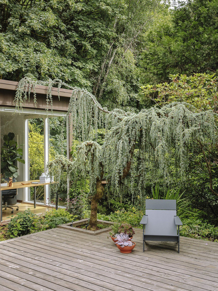 Ngôi nhà có lịch sử lâu đời từ thời hậu chiến Mỹ lại gây thương nhớ nhờ bối cảnh tự nhiên đẹp xuất sắc - Ảnh 3.