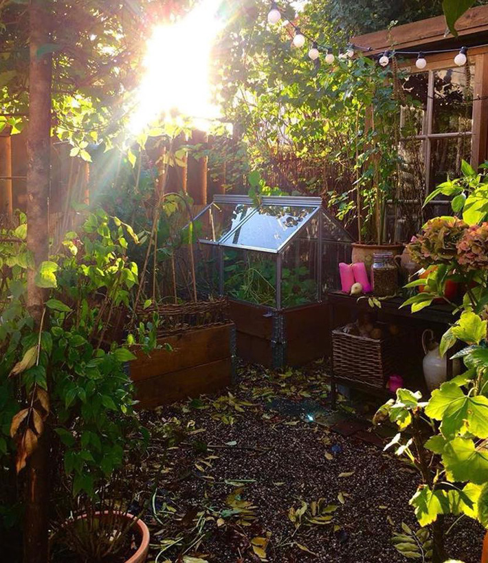 Khu vườn 70m² ngập tràn các loại rau quả và đẹp như trong cổ tích - Ảnh 3.