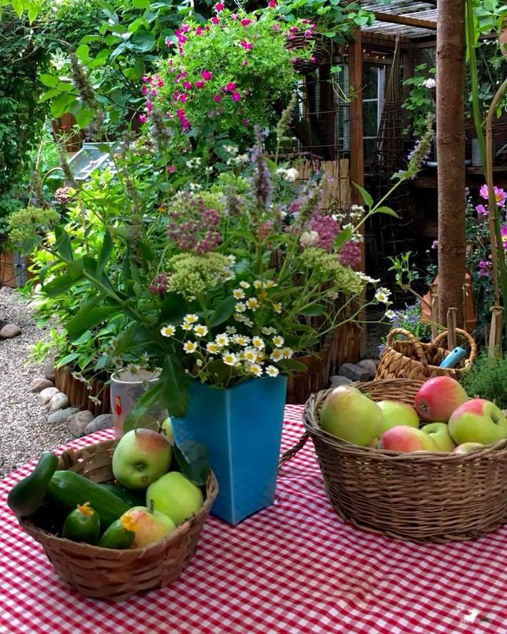 Khu vườn 70m² ngập tràn các loại rau quả và đẹp như trong cổ tích - Ảnh 23.