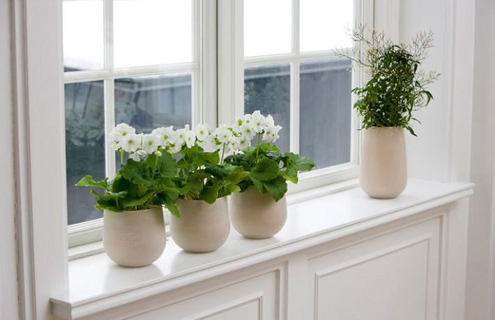 Những cách trang trí cửa sổ đơn giản mà đẹp bất ngờ không phải ai cũng biết - Ảnh 10.