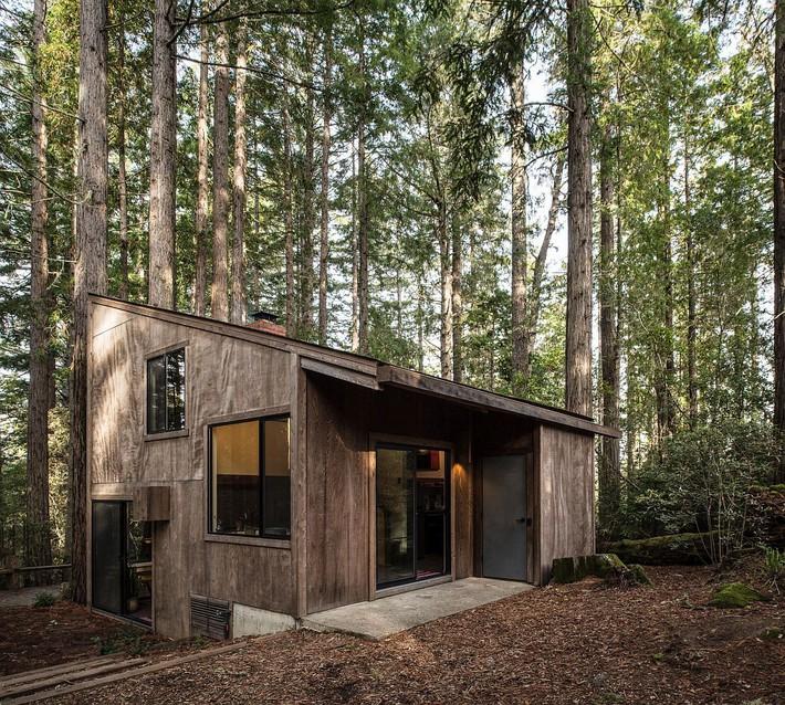 Ngôi nhà gỗ nằm giữa rừng Redwood gây thương nhớ vì vẻ đẹp hiện đại của mình - Ảnh 1.