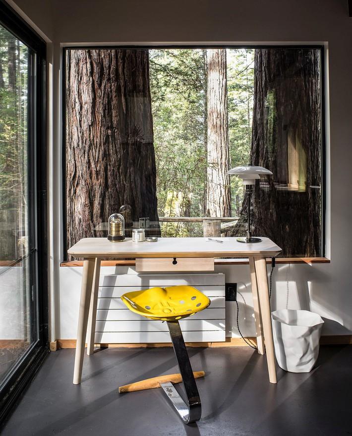 Ngôi nhà gỗ nằm giữa rừng Redwood gây thương nhớ vì vẻ đẹp hiện đại của mình - Ảnh 8.