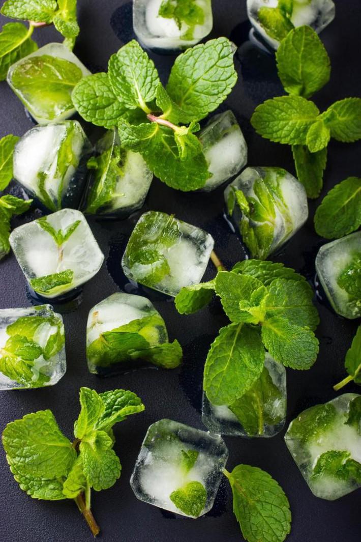 Hướng dẫn cách trồng cây bạc hà: Vừa làm duyên cho tổ ấm vừa bảo vệ sức khỏe cả nhà - Ảnh 4.