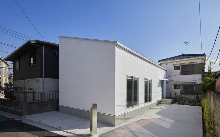 Ngôi nhà gây ấn tượng mạnh vì có lối hành lang được xếp toàn cây cảnh - Ảnh 1.