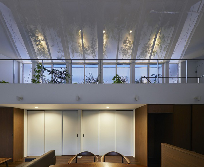 Ngôi nhà gây ấn tượng mạnh vì có lối hành lang được xếp toàn cây cảnh - Ảnh 2.
