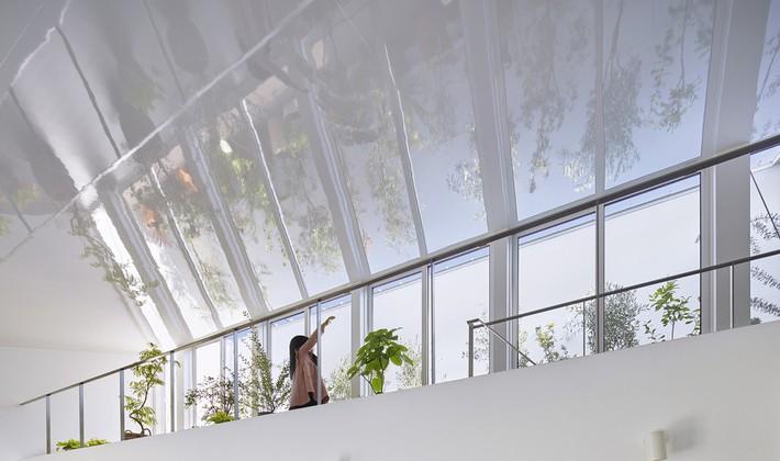 Ngôi nhà gây ấn tượng mạnh vì có lối hành lang được xếp toàn cây cảnh - Ảnh 3.