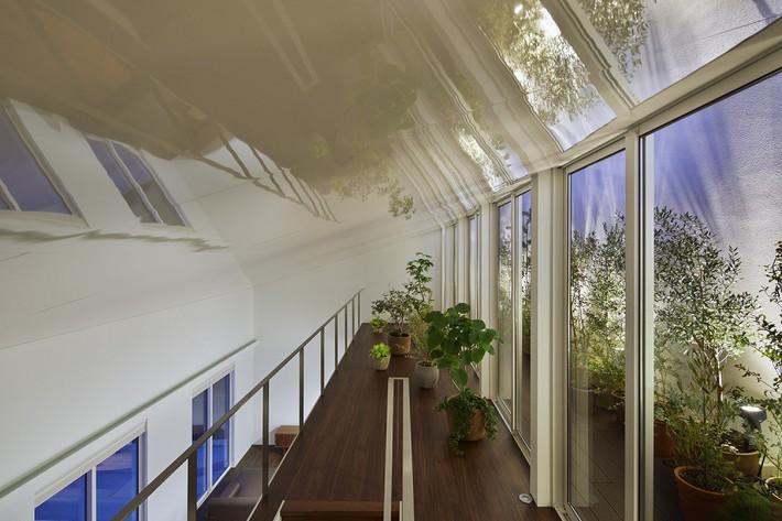 Ngôi nhà gây ấn tượng mạnh vì có lối hành lang được xếp toàn cây cảnh - Ảnh 5.