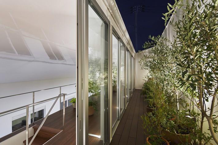 Ngôi nhà gây ấn tượng mạnh vì có lối hành lang được xếp toàn cây cảnh - Ảnh 6.