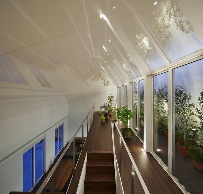 Ngôi nhà gây ấn tượng mạnh vì có lối hành lang được xếp toàn cây cảnh - Ảnh 7.