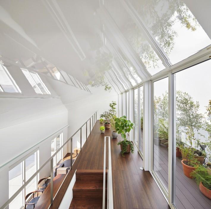 Ngôi nhà gây ấn tượng mạnh vì có lối hành lang được xếp toàn cây cảnh - Ảnh 8.