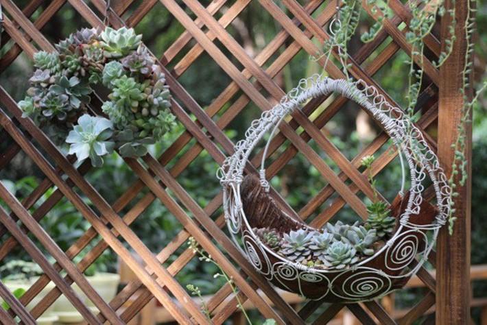 Khu vườn rực rỡ như xứ sở thần tiên của cô gái xinh đẹp với đủ loại hoa khoe sắc - Ảnh 11.