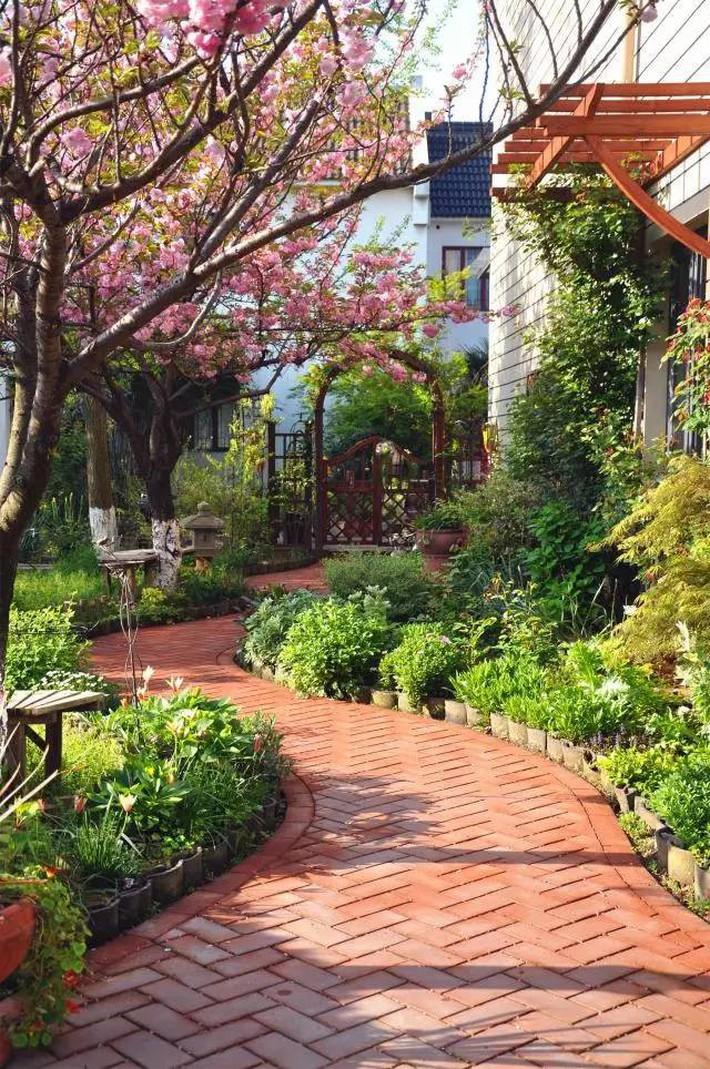 Cuộc sống trọn vẹn niềm vui trong khu vườn nhỏ dịu dàng nét xuân của cô giáo tiếng Anh - Ảnh 2.