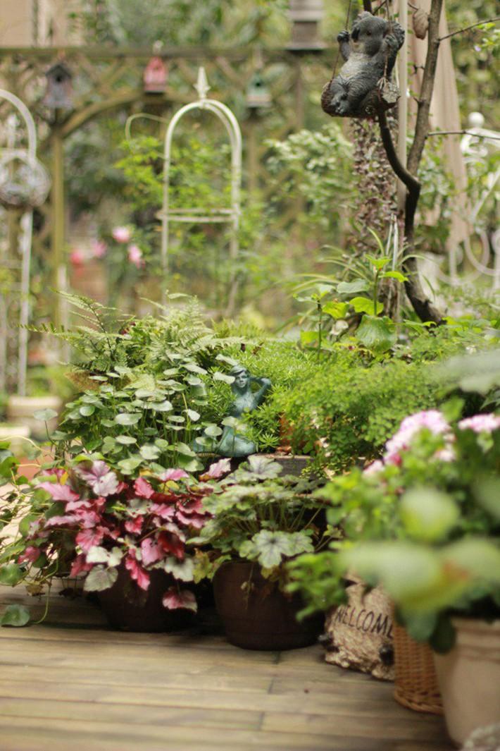 Khu vườn rực rỡ như xứ sở thần tiên của cô gái xinh đẹp với đủ loại hoa khoe sắc - Ảnh 5.